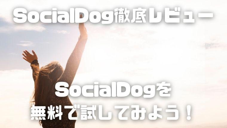 SocialDogは必須ツール_SocialDogを無料で試してみよう!