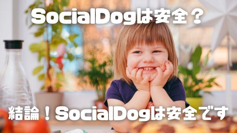 SocialDogは安全?_結論!SocialDogは安全です