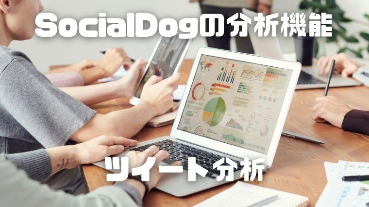 SocialDogの分析機能_ツイート分析