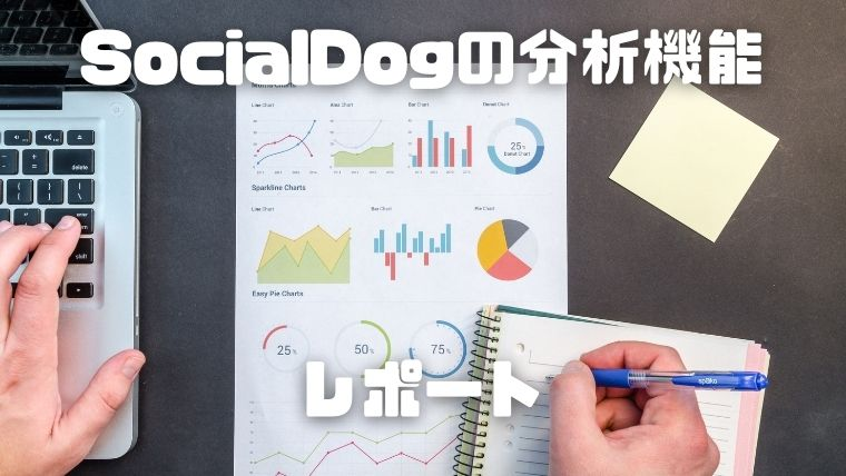 SocialDogの分析機能_レポート
